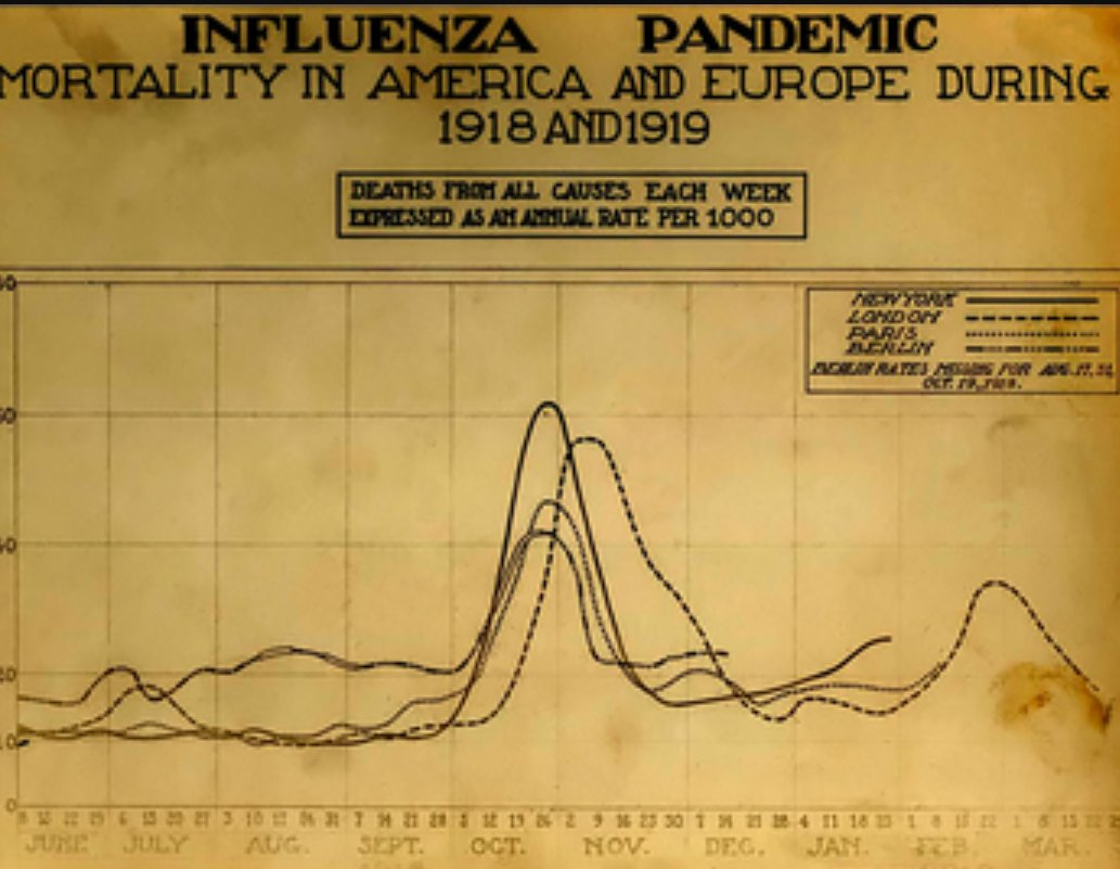 Great Influenza Pandemic Mortality Rate in the United States and Europe, 1918-1919, Credit: Medicine Net